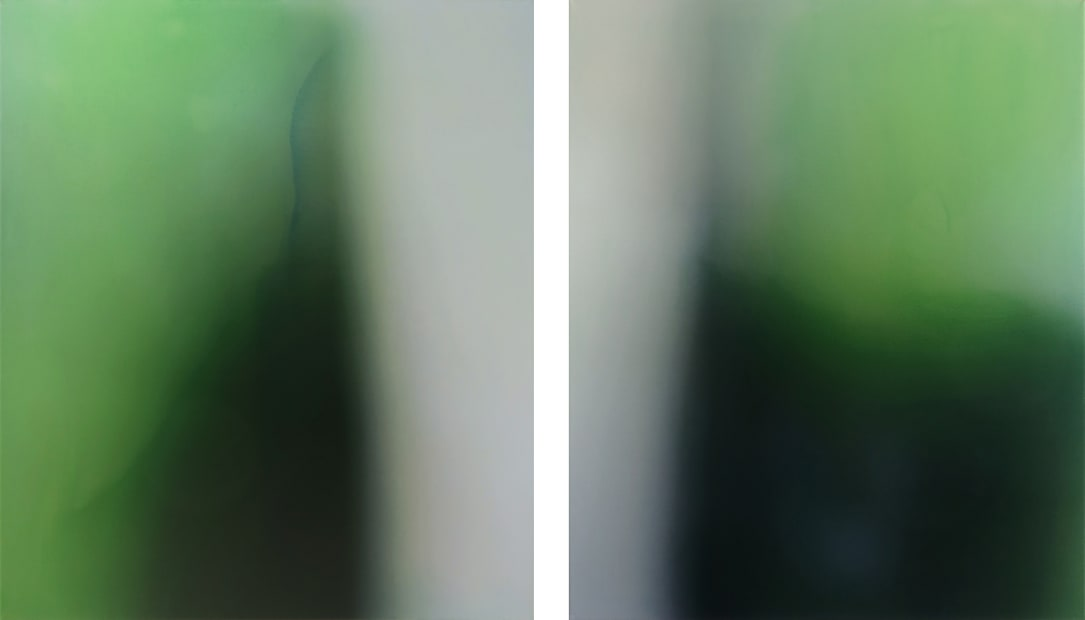 Layers of Silence #27 (diptych), 2017