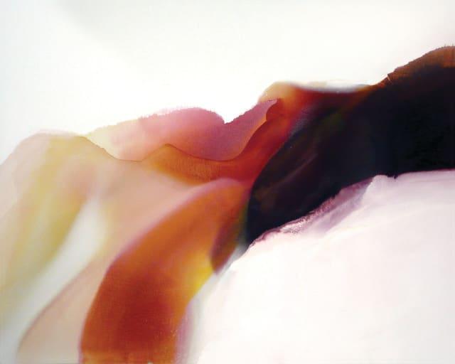 Isness 41, 2008