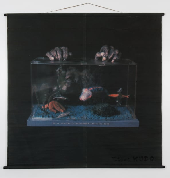 Votre portrait - Coelacanth (Translation painting by computer), 1970-1974