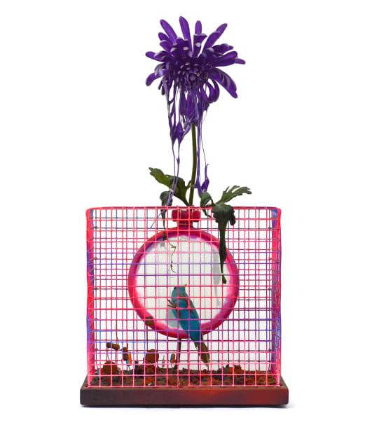 Cage et Oiseau / Miroir, 1976