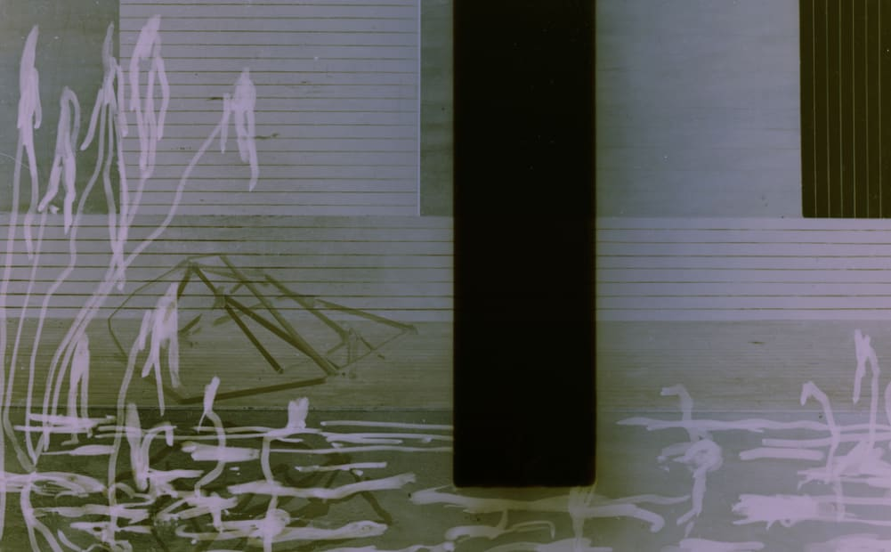 Narcisse #18, 2008
