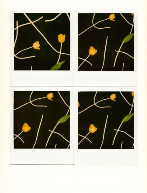 deux tulipes jaunes, 1990