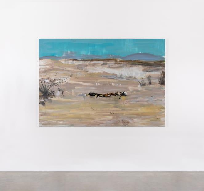 Brian MAGUIRE, Arizona 1, 2020