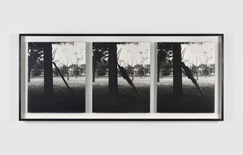 Masaki Nakayama, Identification, 1978