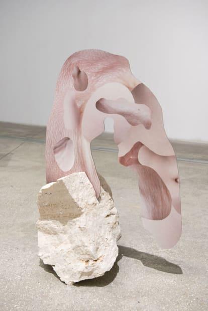 Human Skin In Rock V, 2015