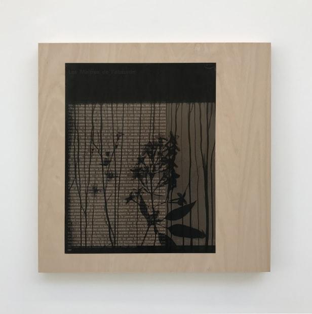 Isabelle Le Minh, Les Maîtres de l'absurde , 2019