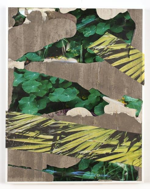 Hawaii Nevada Flora Concrete Bend, 2020