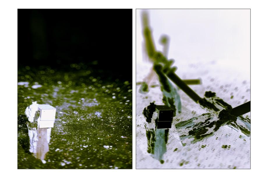 La Parabole des Aveugles, Diptyque #16 P, 2012
