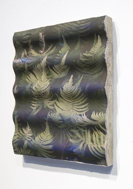 Kauai Ferns Concrete Wave, 2014