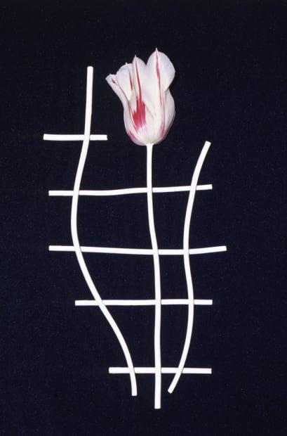 Éludienne, 30 avril 1992