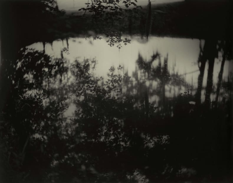 Deep South, Untitled (Avery Island II), 1998