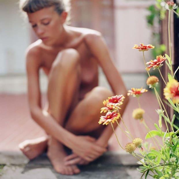 Flower, 2005
