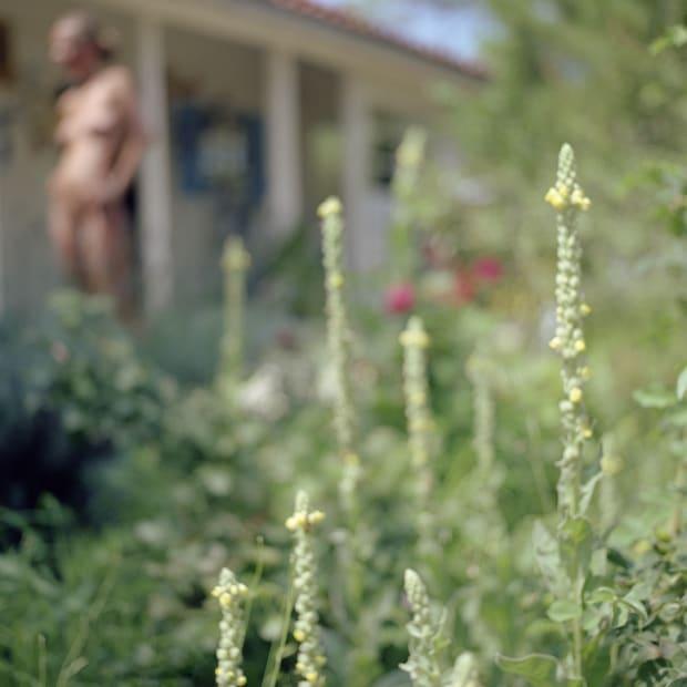 Jardin, 2008