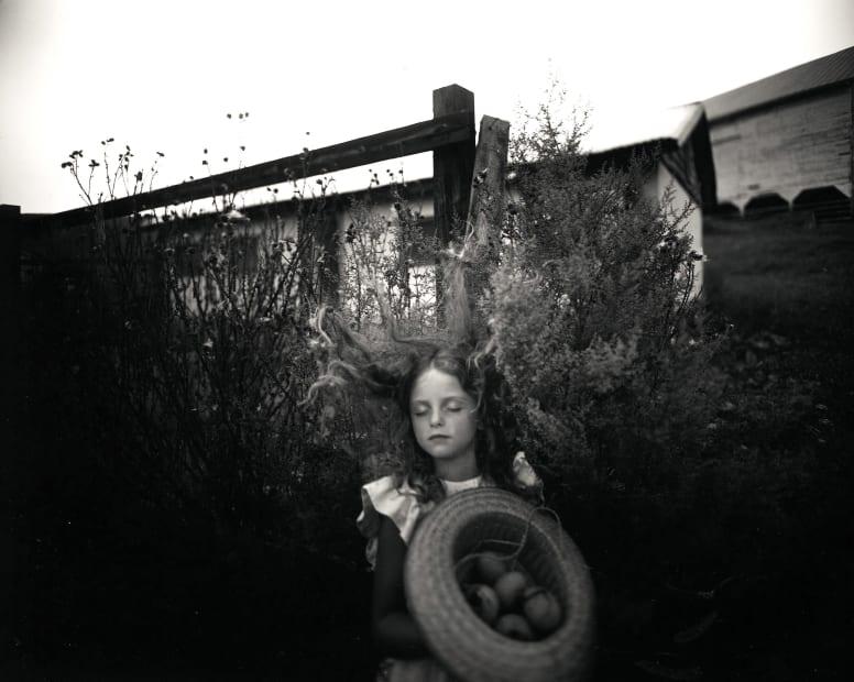 Yard Eggs, 1991