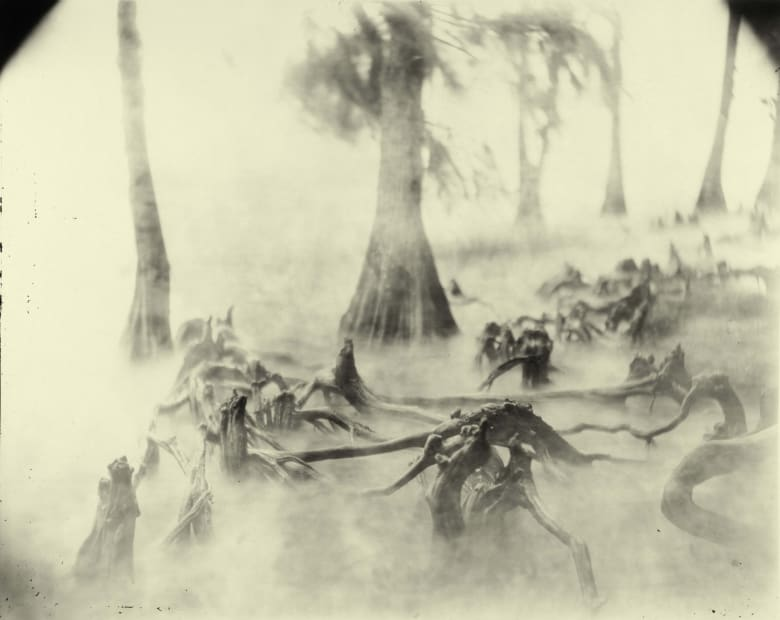 Deep South, Untitled (Swamp Bones), 1998