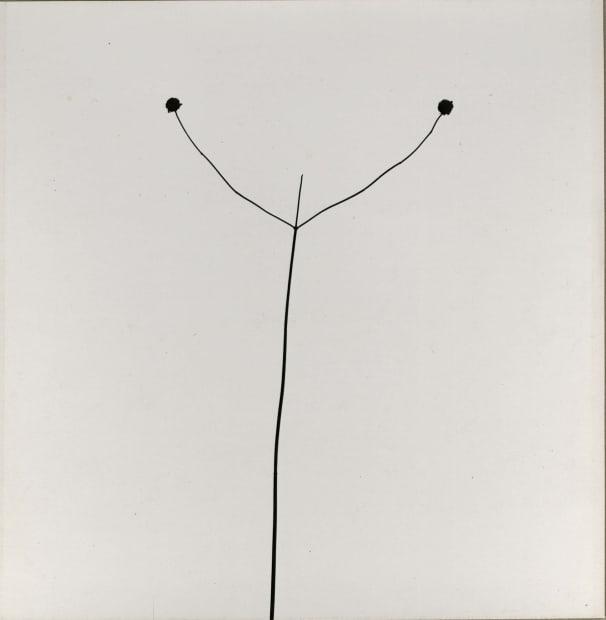 Weed Against Sky, 1948