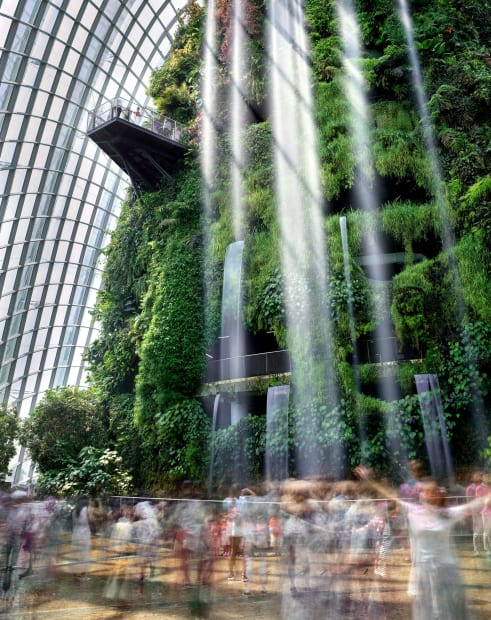 Cloud Forest, Gardens by the Bay, Singapore, 2019