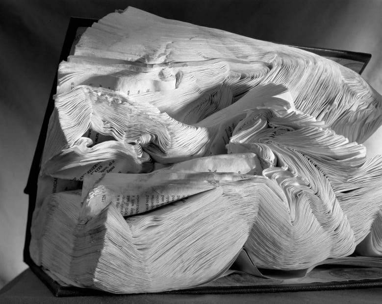 Book Damaged by Water, 2001
