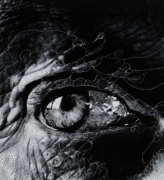 "Eye #11 (After Bill Brandt's ""Henry Moore's eye, 1972""), 2012"