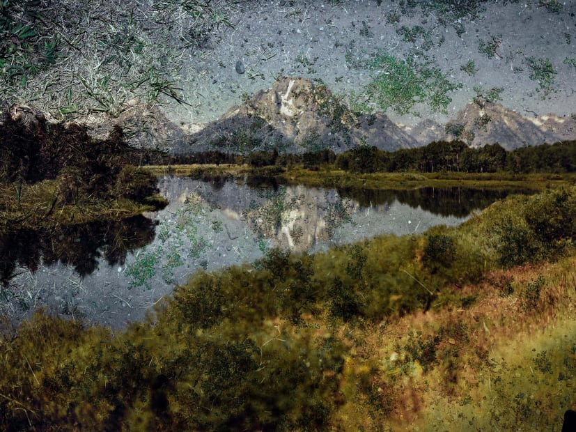 Tent-Camera Image on Ground: View of Mount Moran and the Snake River From Oxbow Bend, Grand Teton National Park, Wyoming, 2011