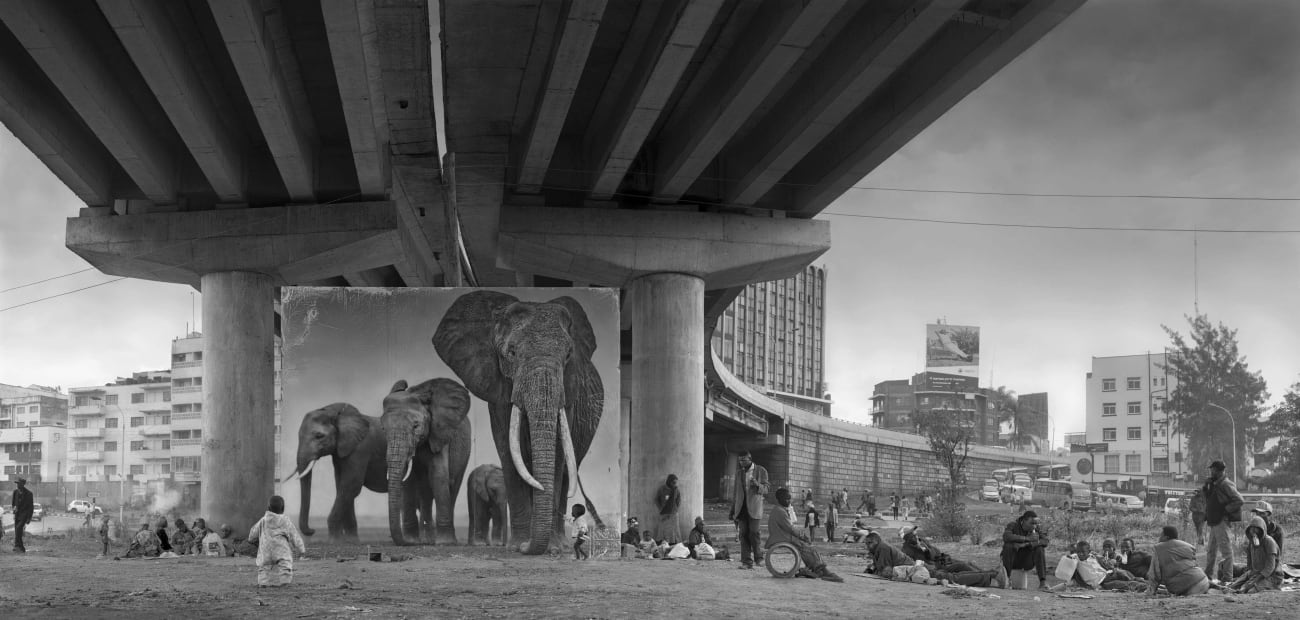 Underpass with Elephants (Lean Back, Your Life is On Track), 2015