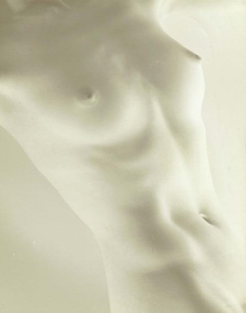 Nude torso, n.d.