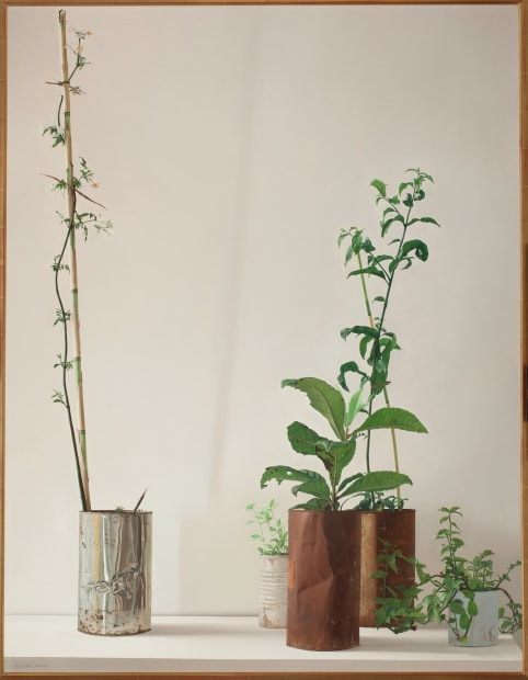 Plants, 1972