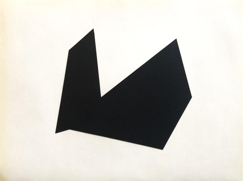 Joseph La Piana, Subfractal Fragment Cutout Relief D, 2019