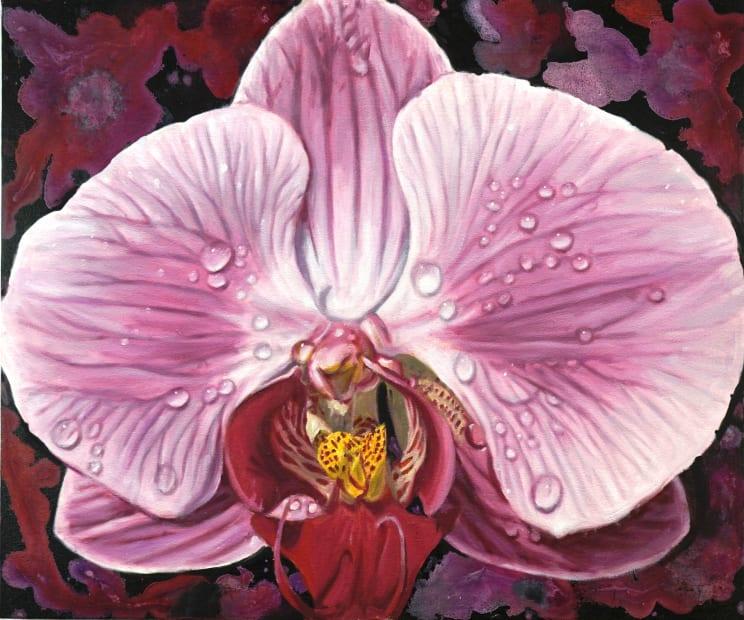 Gail Roberts, Moth Orchid, 2020