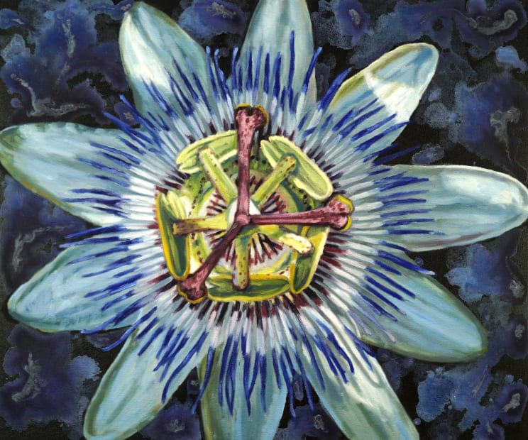 Gail Roberts, Blue Crown Passion Flower, 2019
