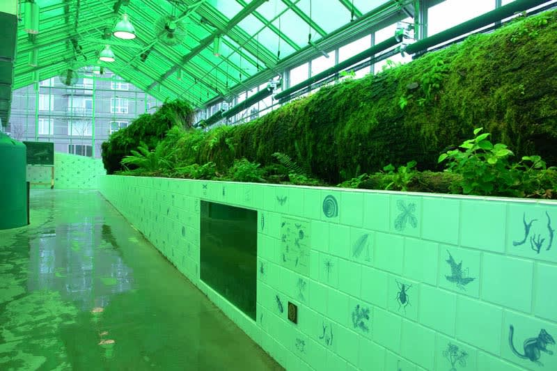 Neukom Vivarium, Olympic Sculpture Park, Seattle, 2006