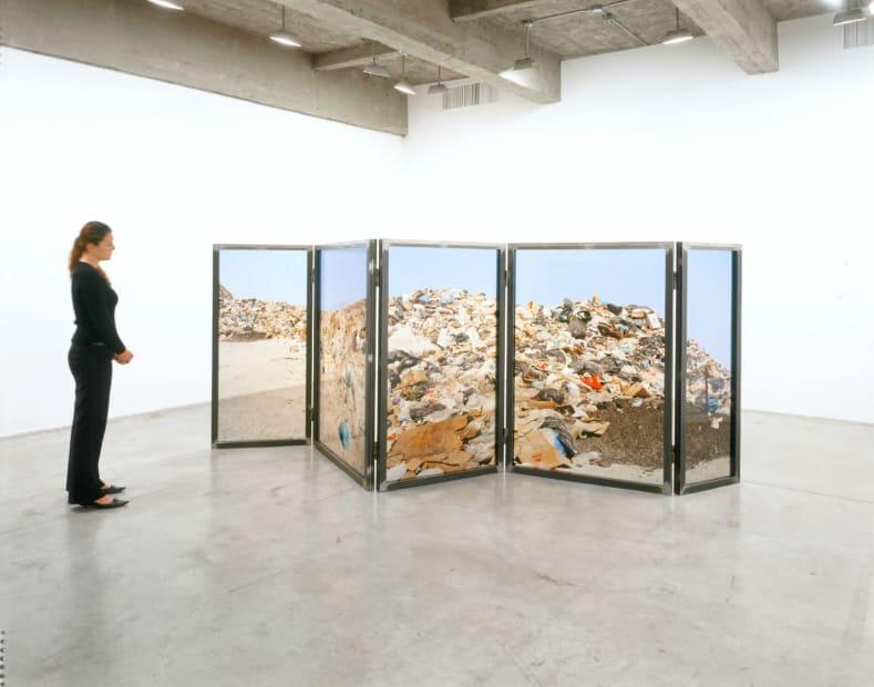 Landscape, 2006