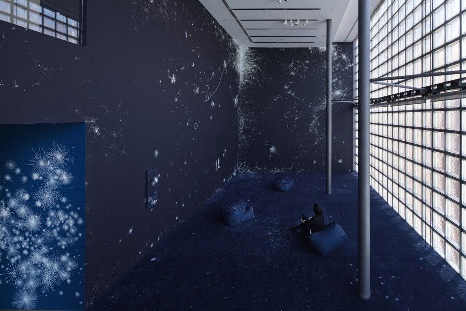 Installation view, Sandra Cinto: Cosmic Garden, Ginza Maison Hermès, Tokyo,, 2020