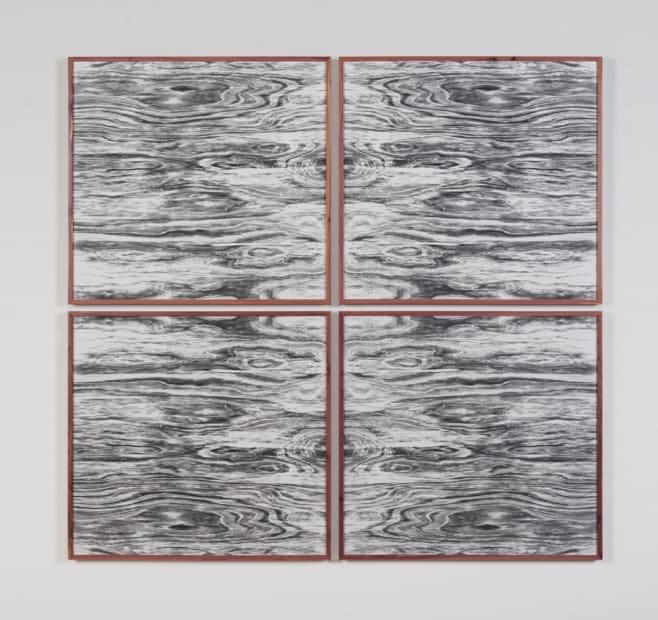 Landscape Portraits (Eastern Red Cedar) (Version I), 2015