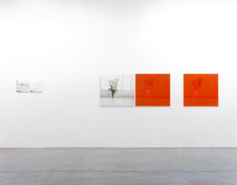Installation view Tanya Bonakdar Gallery, 2005