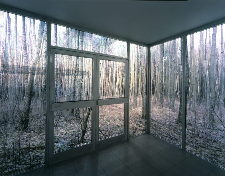 Large Cube in Forest, 2004