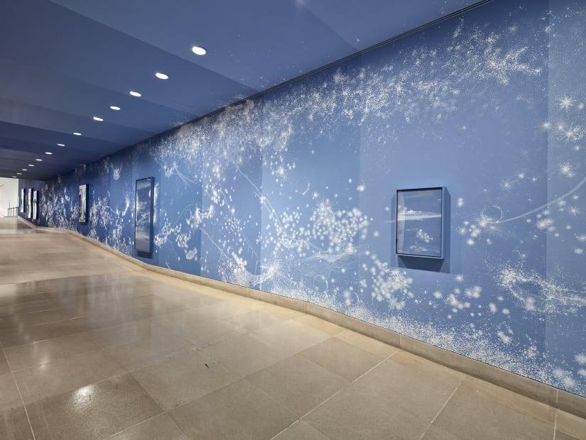Installation view, Sandra Cinto: Landscape of a Lifetime, Dallas Museum of Art, 2019