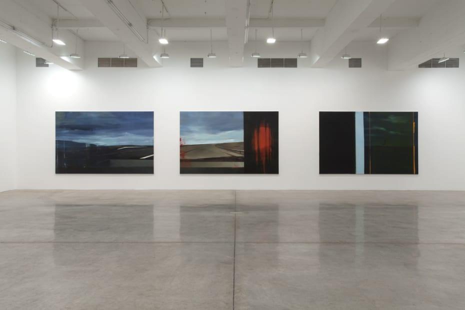 Installation view, Tanya Bonakdar Gallery, 2014