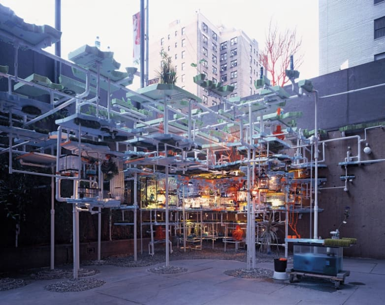 The Triple Point of Water, Whitney Museum of American Art, 2003