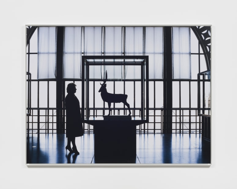 Geraldine and the stag, Paris, December 2016, 2016