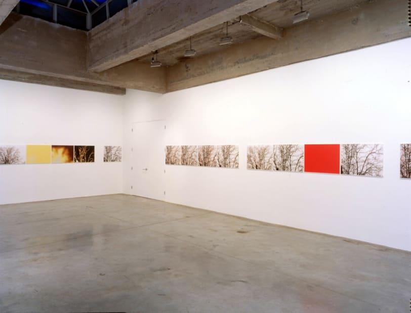 Installation view Tanya Bonakdar Gallery, 2002
