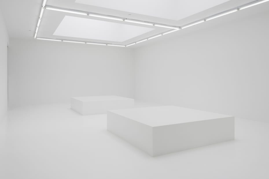 Hvítblinda (Whiteout), 2019