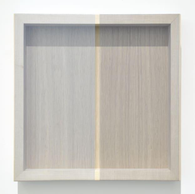 Untitled Grid (Borderless dual tone), 2014