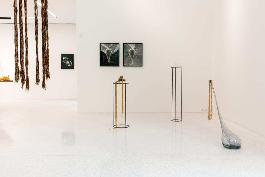 Akashi installation view at ARCH