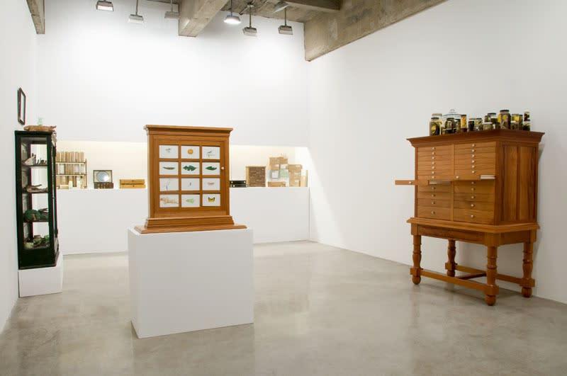 TRAVELS OF WILLIAM BARTRAM - RECONSIDERED installation image