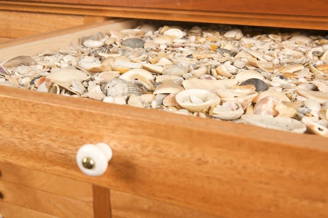 drawer with shells