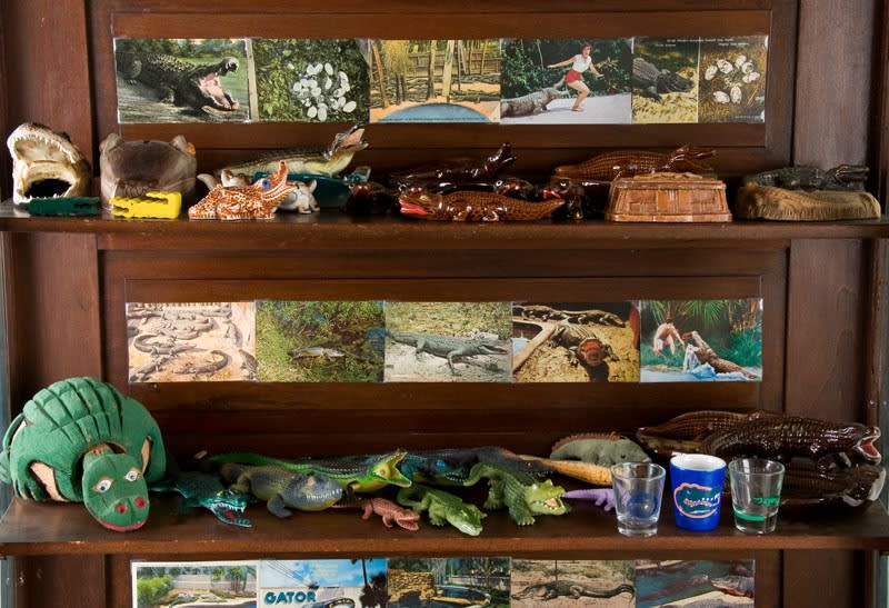 cabinet with alligator photos