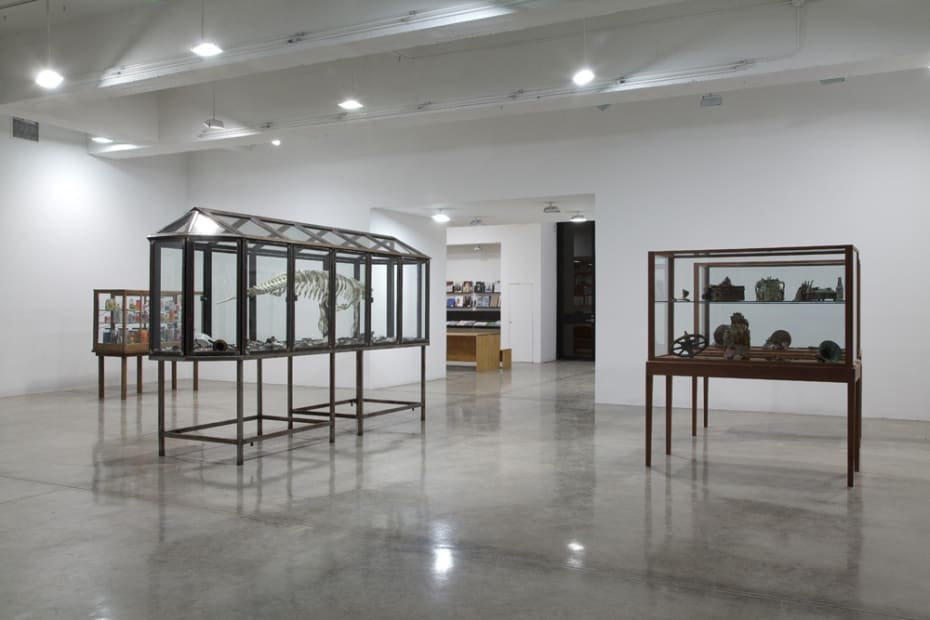 Dion install view with glass cabinets and skeletons