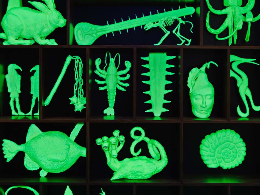 glow in the dark cabinet of animal skeletons