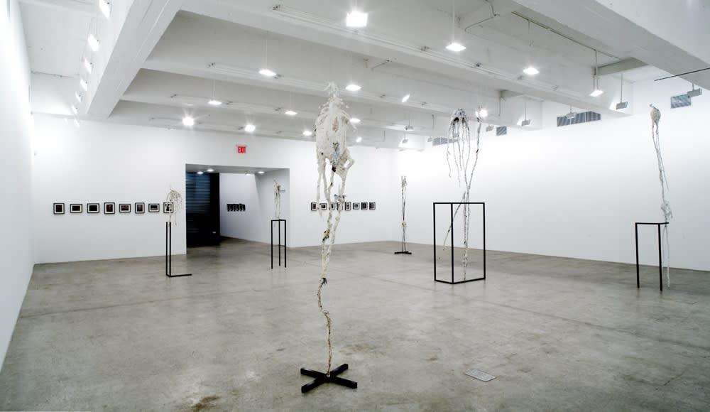Charles Long installation view at TBG, bird sculptures